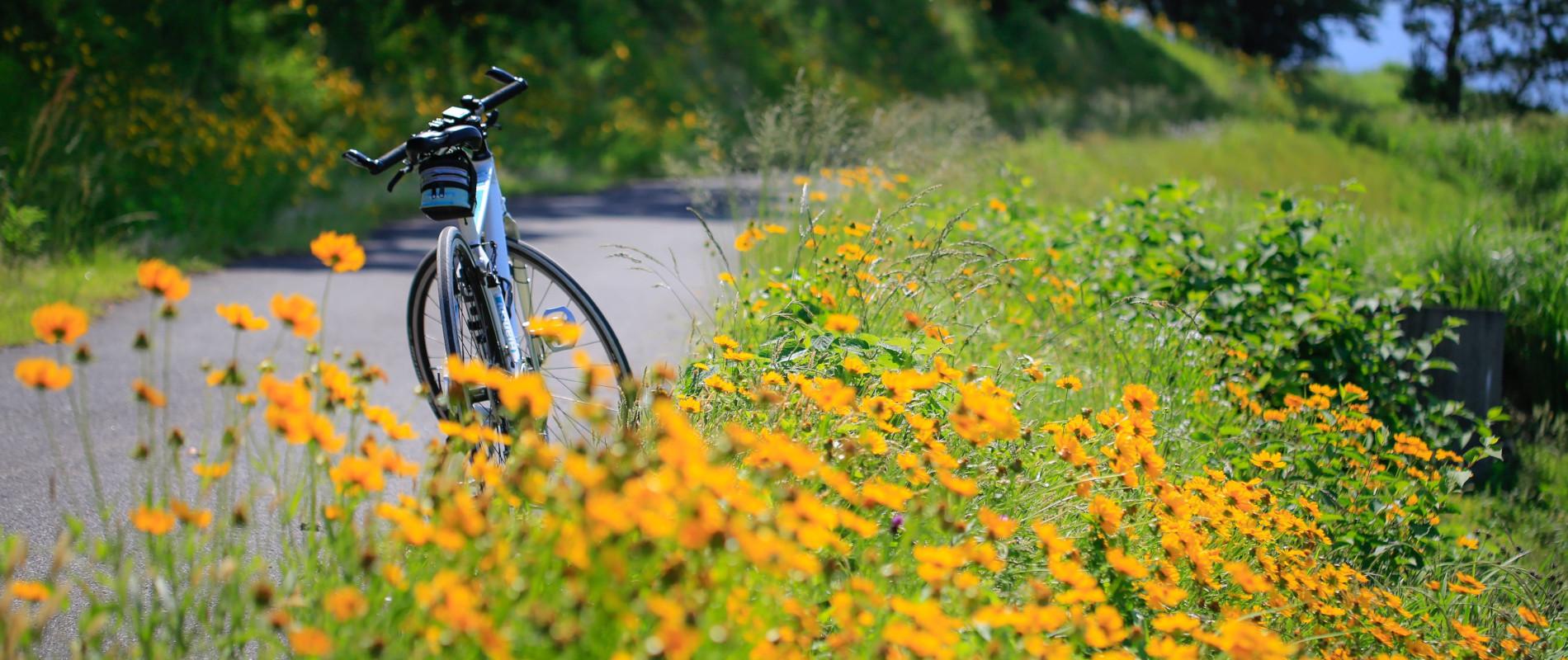 清水輪業自転車部門